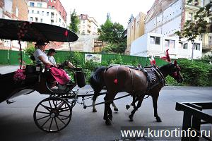 Карловы Вары Чехия фото № chekhiya-karlovy-vary-progulka-po-karlovym-varam-s-ds2_0606